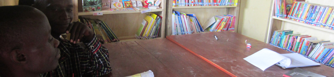 Stories for our school libraries in Uganda